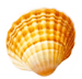 Tiare-Style-Sea-Shell